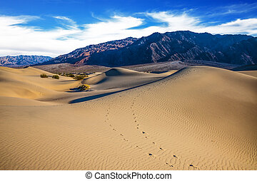 Mesquite Flat Sand Dunes. Hot autumn in Death Valley,...
