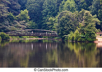 Walkers on a Metal Bridge Over a Park Lake