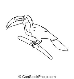 Mexican keel-billed toucan icon in outline style isolated on...