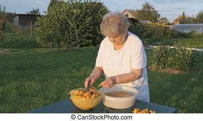 Elderly woman separates chanterelle mushrooms - Elderly...