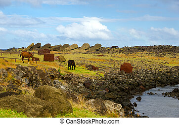 Horses on Easter Island - Horses picking their way through...