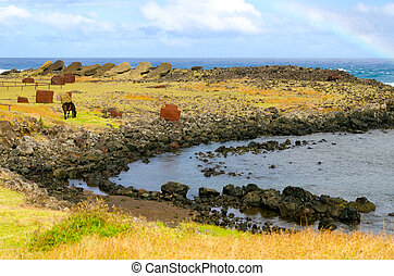 Horse grazing on the shore of Easter Island - Solitary horse...