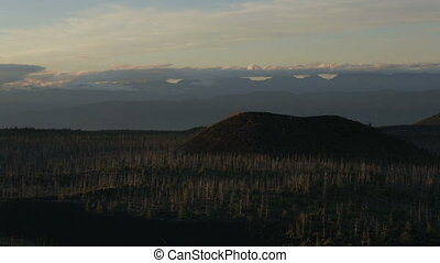 Dead Forest near volcanoes. Kamchatka Peninsula in the...