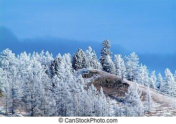 azul, montanha, Inverno, céu, neve, árvores, fundo, coberto, lado