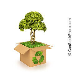 Concept of nature conservation. Cardboard box with Recycle...