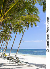 Beautiful tropical beach, palm tree and sea water - Tropical...
