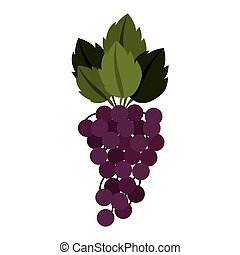 silhouette colorful of bunch grapes with stem and leafs...