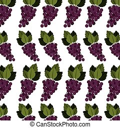 colorful pattern of bunch grapes with stem and leafs vector...