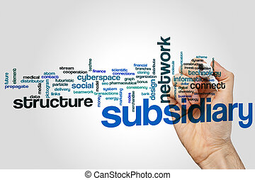 Subsidiary word cloud concept