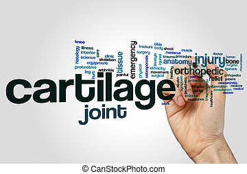 Cartilage word cloud concept