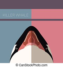 Killer Whale flat postcard - Vector image of the Killer...