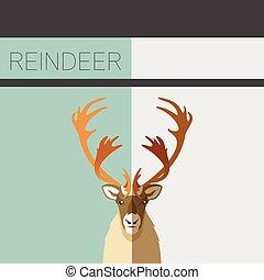carte postale, plat, renne
