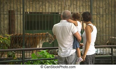 Grandmother Taking Picture Of Happy Family In Zoo With...