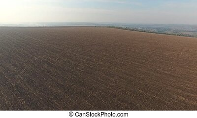 Autumn harvested field with the remnants of ears of corn -...