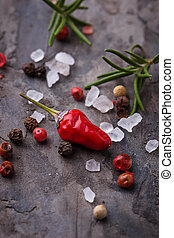 Red hot chilli peppers, rosemary and salt. Selective focus