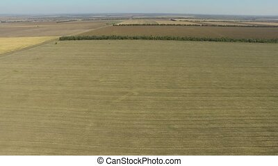 Endless fields after the harvest wheat crop. Aerial view -...