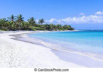 Beautiful white sand Caribbean beach - White sandy beach...