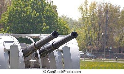 Retired twin cannon gun
