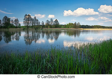Beautiful spring landscape with river, trees and blue sky.