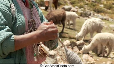 Farmer in Spinning (Peru)