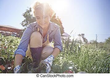 Woman working in her garden