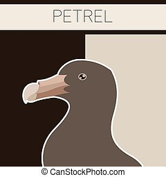 Petrel flat postcard - Vector image of the Petrel flat...
