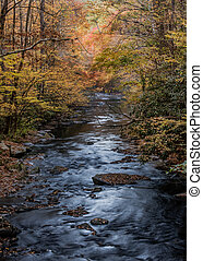 The Dark Water of Cataloochee Creek in fall