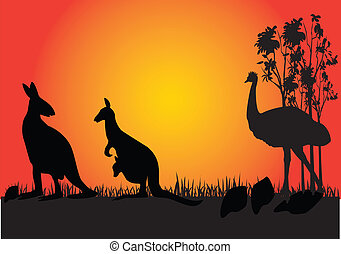 kangarooo and emu in the sunset