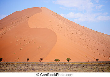 sand dune - beautiful sand dune