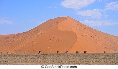 sand dune - beautiful sand dune
