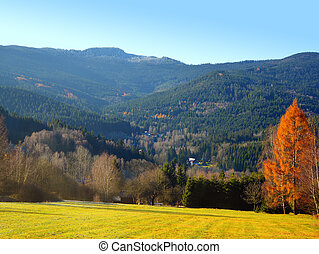 Autumn landscape in the national park Sumava - Czech...