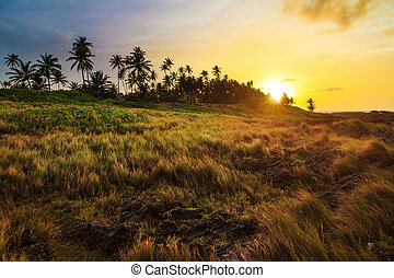 Coastline sunset Puerto Rico - Vibrant sunset at the Puerto...