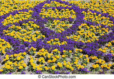 Dunedin Flower Decorations - The view of flower decorations...