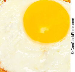 Fried egg background white top yellow