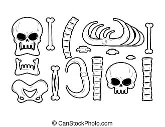 Bones set. Anatomy icons. Skull and spine. Jaw and pelvis....