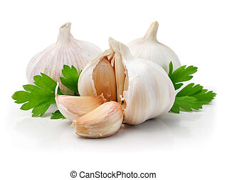 ripe garlic fruits with green parsley leaves isolated on...
