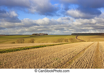 yorkshire wolds farmling - a yorkshire wolds agricultural...