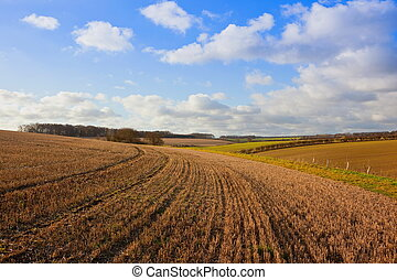 autumn stubble field on the Yorkshire wolds - patterns and...
