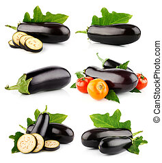 set eggplant vegetable fruits isolated on white