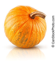 yellow pumpkin vegetable isolated on white