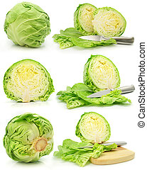 collection of green cabbage vegetables isolated