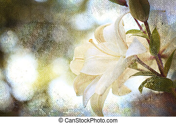 background with flowers - Textured old paper background with...