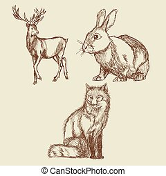 animals hand drawing collection vintage