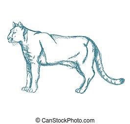 panther sketch blue vintage