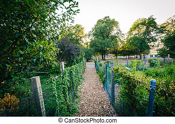 Walkway and gardens at Back Bay Fens, in Boston,...