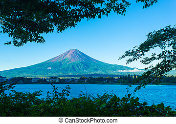 Mount Fuji Framed Trees Morning Kawaguchiko Lake -...