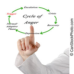 cycles of anger