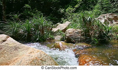 Polished Rock on Fast Transparent Mountain River with Green...