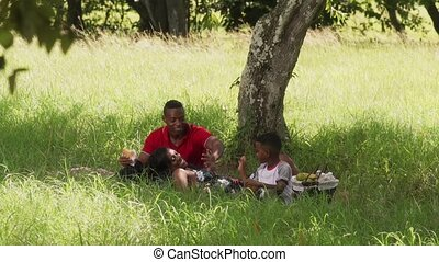 Father Mother Son Eating Food During Picnic On Summer...