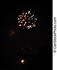 Celebratory bright firework in a night sky
